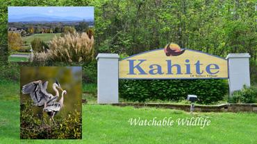 Kahite_Community2